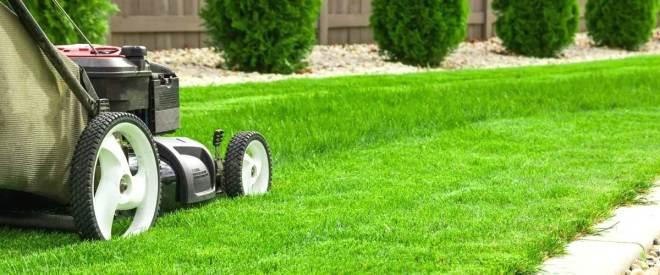 Selecting A Garden Maintenance Service: Things That Matter!