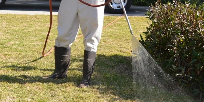 Landscaping And Weed Management: Things Worth Knowing!